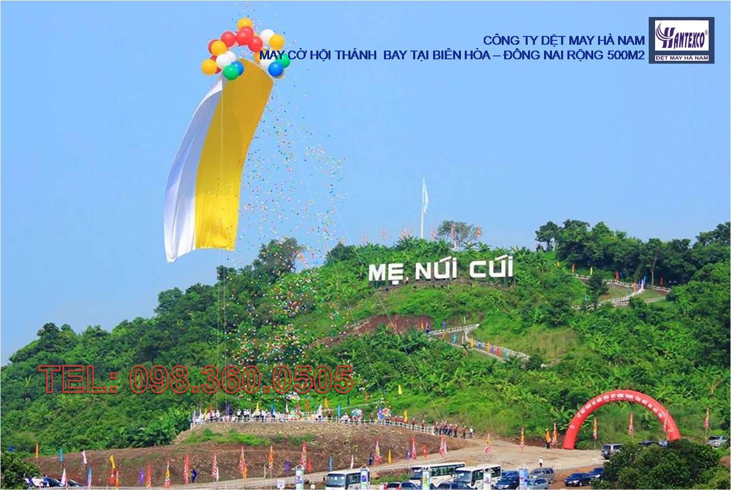 Cung cấp cờ Hội thánh bay tại Đồng Nai - Rộng 500m2